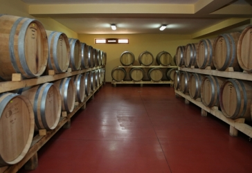 CEPARI WINERY