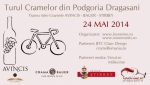 Cycling Tour across Dragasani Vineyard