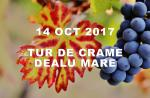14 octombrie 2017 │ Tur de crame in podgoria Dealu Mare │ Lacerta & Budureasca