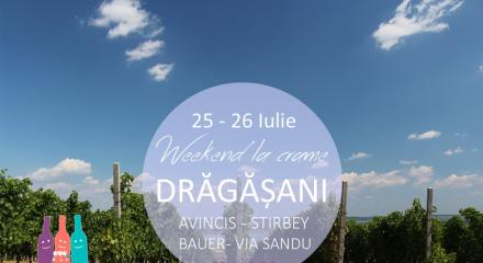 WEEKEND LA CRAME IN DRAGASANI, 25 - 26 IULIE 2015
