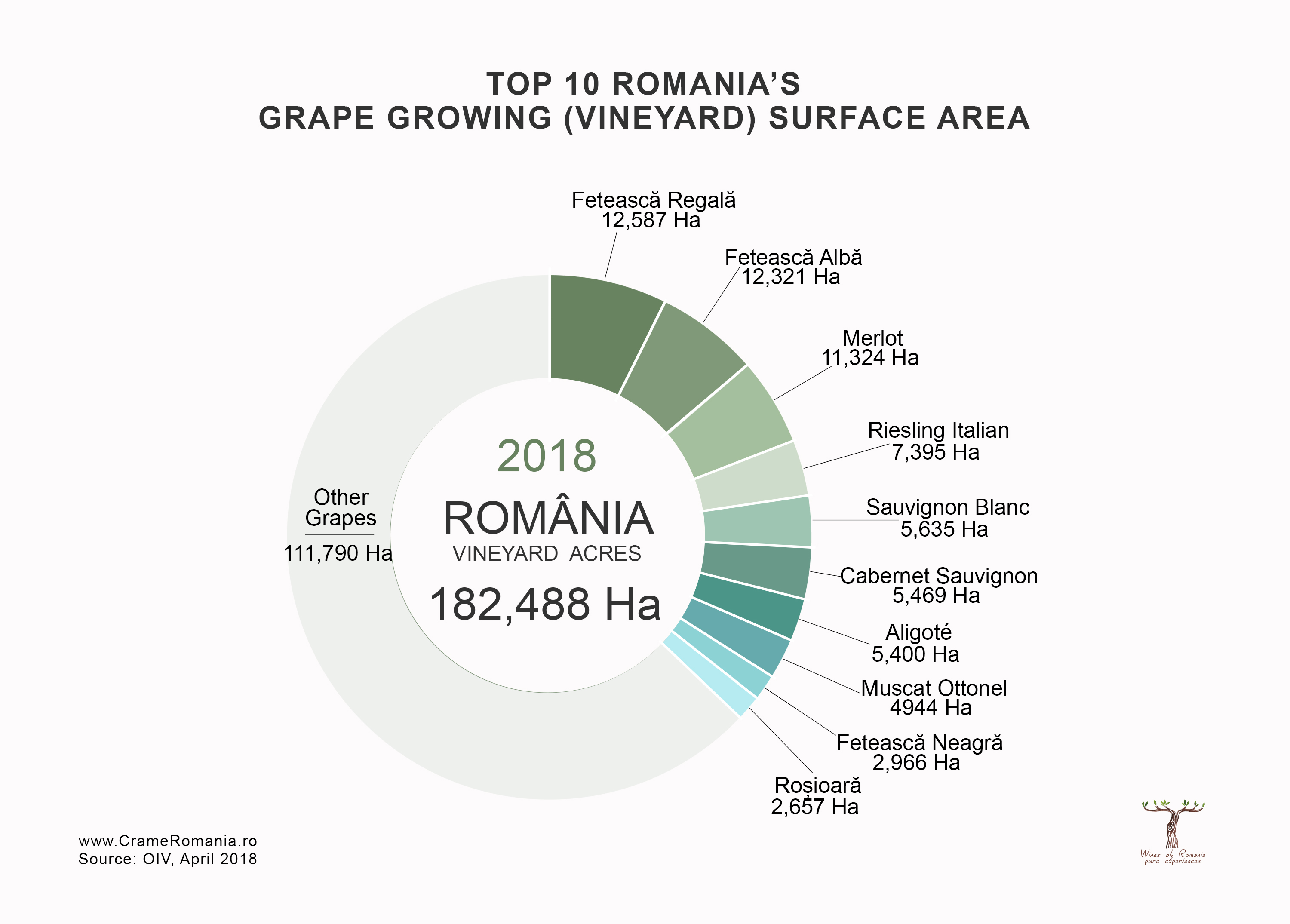 top 10 romanian grapes